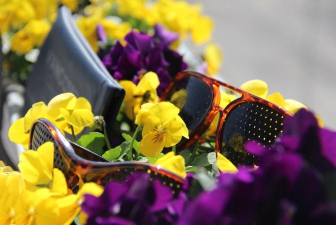 Blumen Raster Brillen