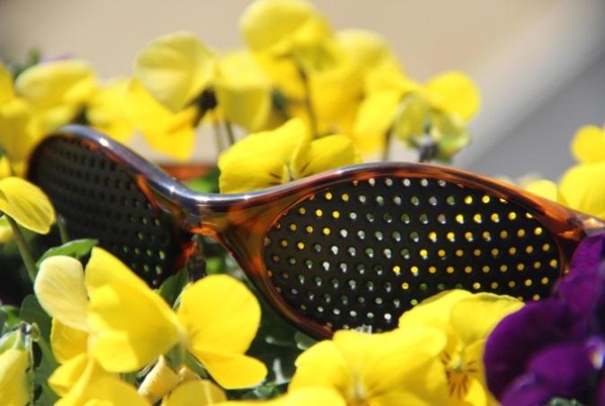 gelbe Blumen schmale Brille